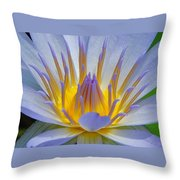 Water Lily 18 Throw Pillow