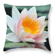 water lily 45 Water Lily with Reflection Throw Pillow