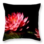 Water Lily 5 Throw Pillow by Julie Palencia