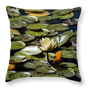 Water Lily And Bees Throw Pillow