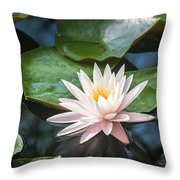 Water Lily And Lily Pads Throw Pillow