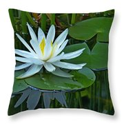 Water Lily And Reflection Throw Pillow