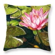 Water Lily At The Biltmore Gardens Throw Pillow