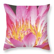 Pink Water Lily Beauty Throw Pillow