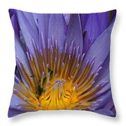 water lily from Madagascar Throw Pillow