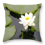 Water Lily I I Throw Pillow