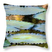 Water Lily Pads In The Morning Light Throw Pillow