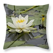 Water Lily Pictures 45 Throw Pillow