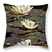 Water Lily Pictures 64 Throw Pillow