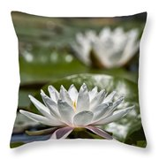 Water Lily Pictures 70 Throw Pillow