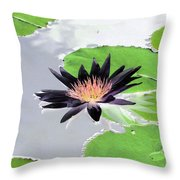 Water Lily - Purple Power - Photopower 1376 Throw Pillow