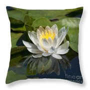 Water Lily Reflection Throw Pillow