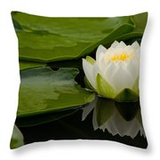 Water Lily Reflection II Throw Pillow