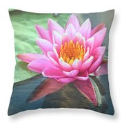 Water Lily Throw Pillow by Sandi OReilly