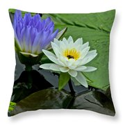 Water Lily Serenity Throw Pillow