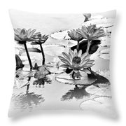 Water Lily Study - Bw Throw Pillow