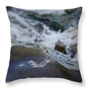 Water Mountain 1 By Jrr Throw Pillow