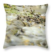 Water Over The Dike Throw Pillow