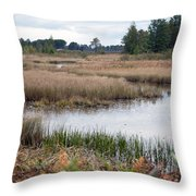 Water Path Throw Pillow