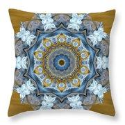 Water Patterns Kaleidoscope Throw Pillow