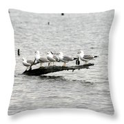 Water Perch Throw Pillow