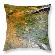 Water Plants 2 Throw Pillow