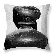Water Pots Throw Pillow