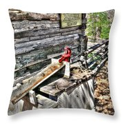 Water Pump In Nature Throw Pillow