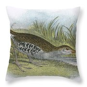 Water Rail Throw Pillow