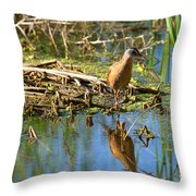 Water Rail Reflection Throw Pillow