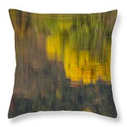 Water Reflections Abstract Autumn 2 B Throw Pillow