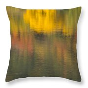 Water Reflections Abstract Autumn 2 C Throw Pillow