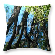 Water Reflections 3 Throw Pillow