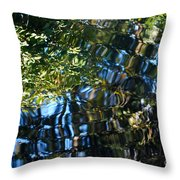 Water Reflections 7 Throw Pillow