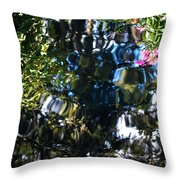 Water Reflections 8 Throw Pillow