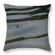 Water Skipper In Digital Oil Pastel Throw Pillow