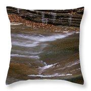 Water Slide Throw Pillow