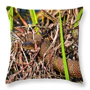 Water Snake In Hiding Throw Pillow