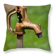 Water Spicket Or Spigot Throw Pillow