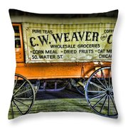Water St. -  Chicago - The Salesman  Throw Pillow by Paul Ward