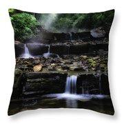 Water Steps In Fairmount Park Throw Pillow