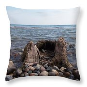 Water Stump Throw Pillow