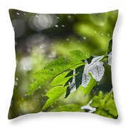 Water-the Essence Of Life V3 Throw Pillow