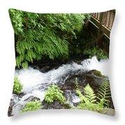 Water Under The Bridge I Throw Pillow