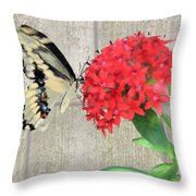 Watercolor Butterfly Two Throw Pillow
