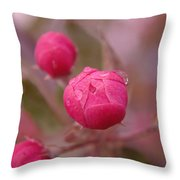 Waterdrops Before Blooming Throw Pillow