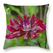 Waterdrops On Petals  Throw Pillow