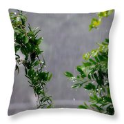 Watered By Nature Throw Pillow