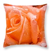 Watered Rose Throw Pillow