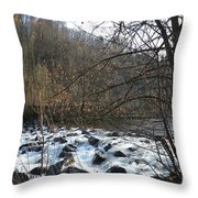 Waterfall 2 Throw Pillow